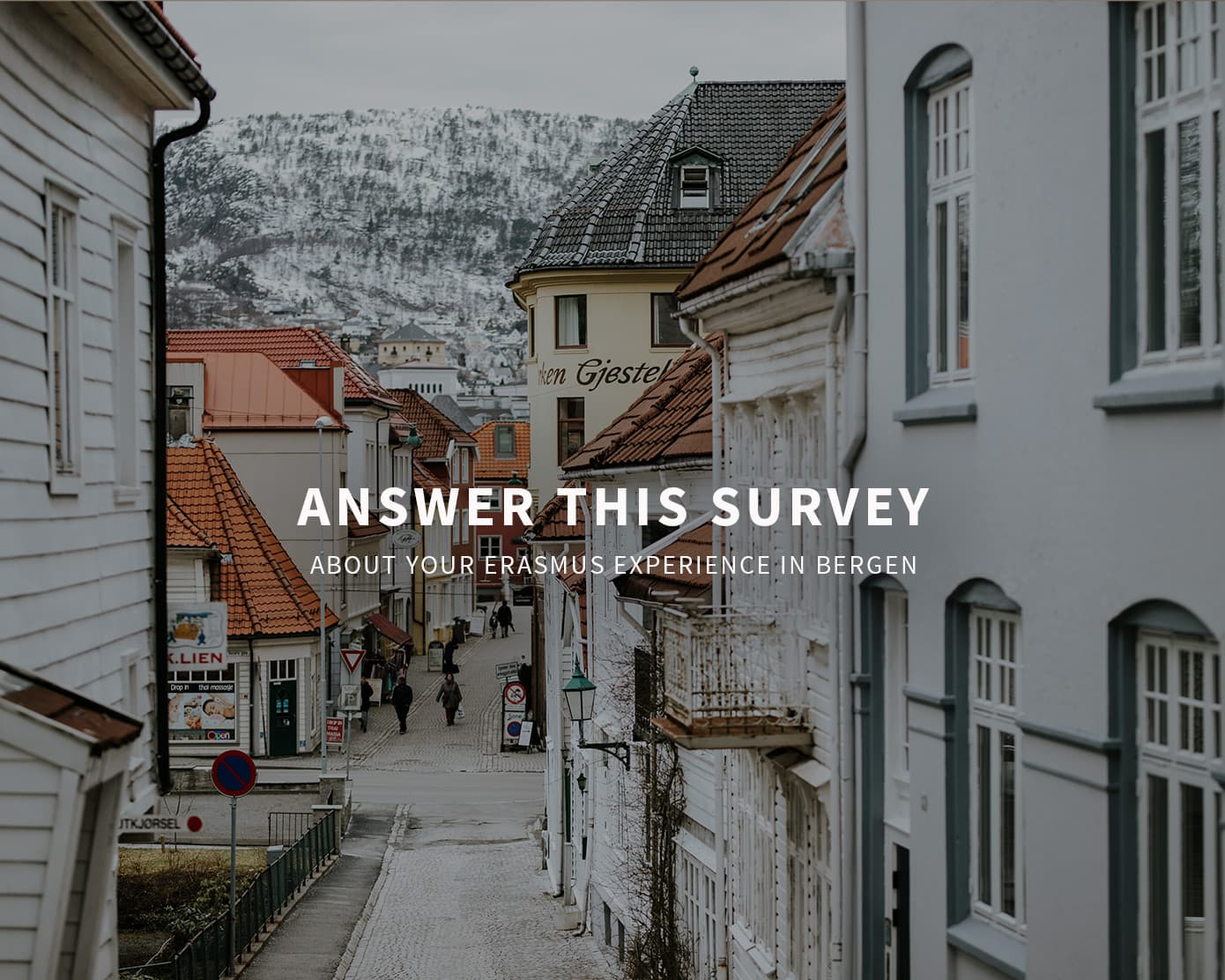 Answer this survey about your Erasmus Experience